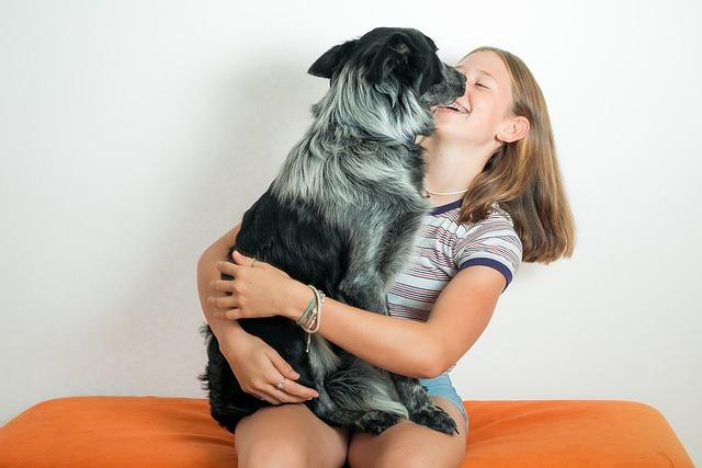 בני אדם וכלבים